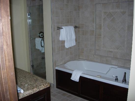 Le Bondurant: Master bathroom