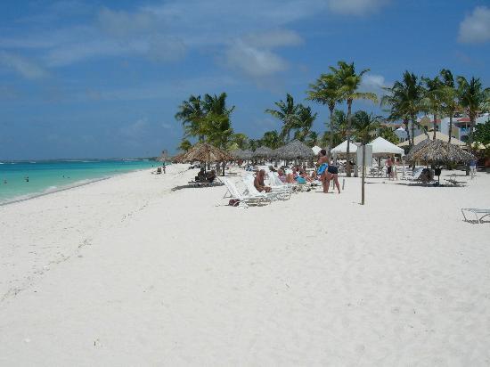 Bucuti & Tara Beach Resort Aruba : the beach at bucuti