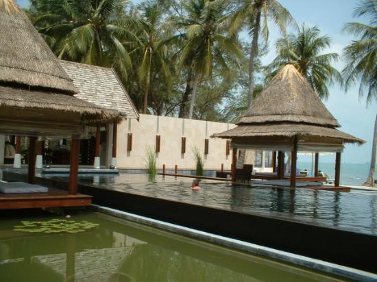 SALA Samui Choengmon Beach Resort: Lap pool - overlooking beach