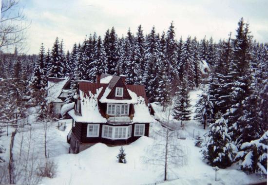 Belvedere Hotel : View from the bedroom window