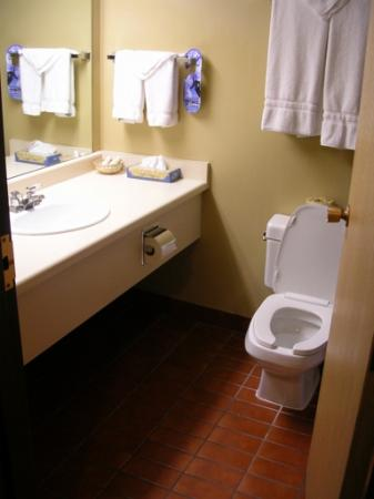 Goldminer's Daughter Lodge: Bathroom
