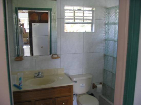 Sydans Apartments and Villas: Downstairs Bathroom