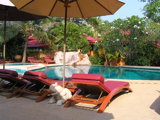 Zazen Boutique Resort & Spa: The small but perfectly formed pool
