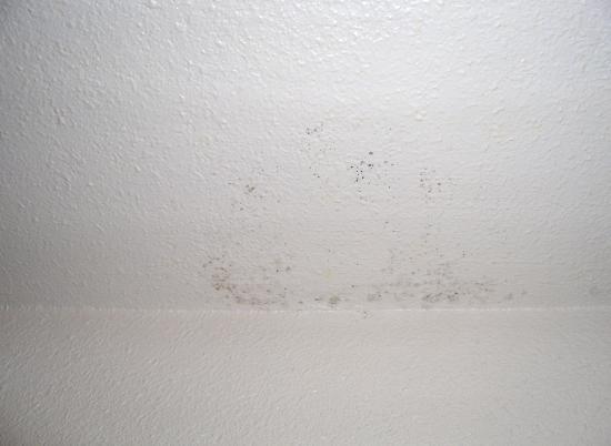 Summit Condominiums: more ceiling mold