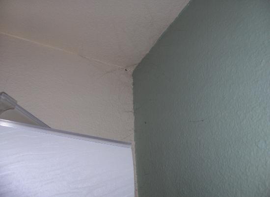Summit Condominiums: cobwebs everywhere..true