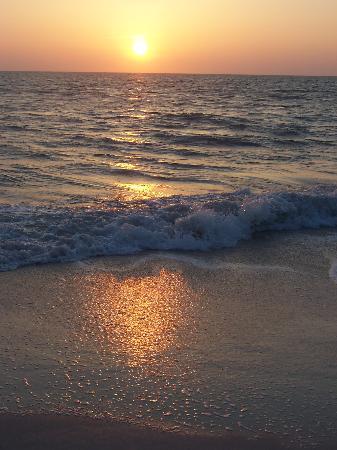 Park Shore Resort : Naples Sunset