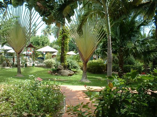 Paradise Beach Resort: Gardens