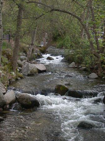 Lithia Park : Lithia Creek at the Park