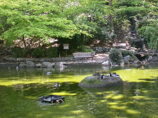 Parque Lithia: Lithia Park