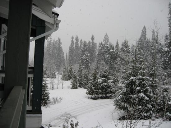 Granite Court: Fresh powder every day- 60cm of snow in 4 days!  This is the view from Casa Kettlewell.