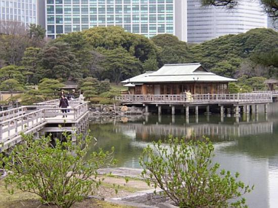 Hama Rikyu Hage: the tea house