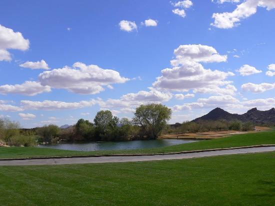 Boulders Resort & Spa, Curio Collection by Hilton: One beautiful view in the grounds