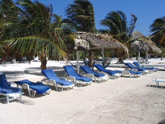 Corona del Mar Hotel & Apartments: Beach at Corona del Mar