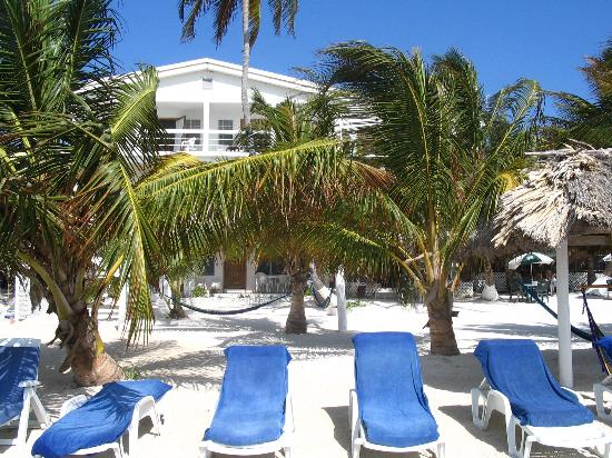 Corona del Mar Hotel & Apartments: Beach at Corona del Mar II