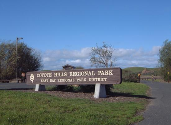 Museum at Coyote Hills