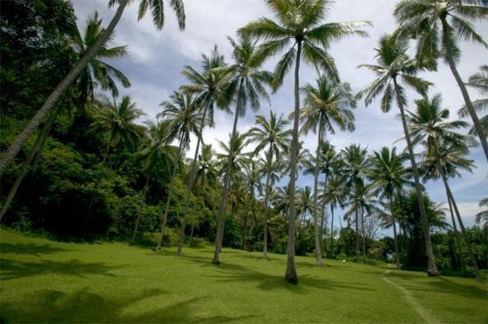 Amankila: By the pool house and beach