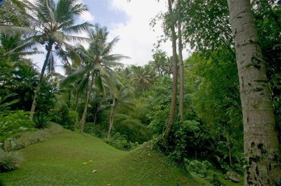 Four Seasons Resort Bali at Sayan: Villas with views of the river