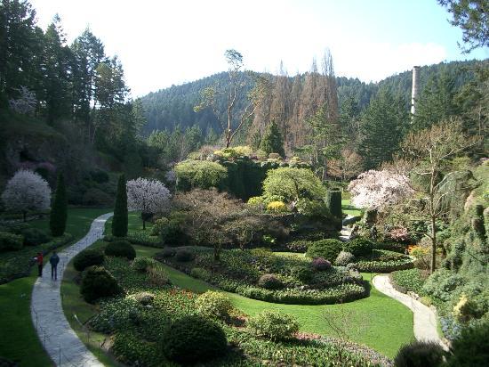 Butchart Gardens The Sunken Garden Picture Of Victoria Victoria Capital Regional District