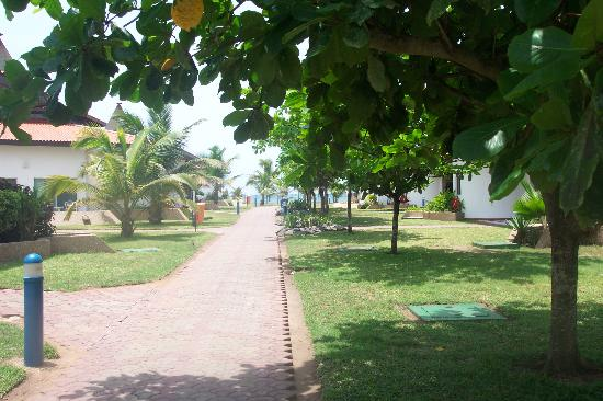 La-Palm Royal Beach Hotel: View of the hotel gardens and accomodation