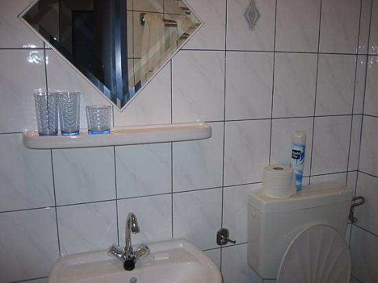Pension Hargita: small clean bathroom