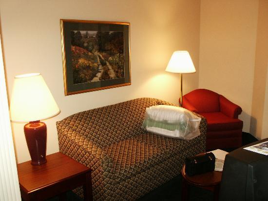 SpringHill Suites Atlanta Kennesaw: Sofabed
