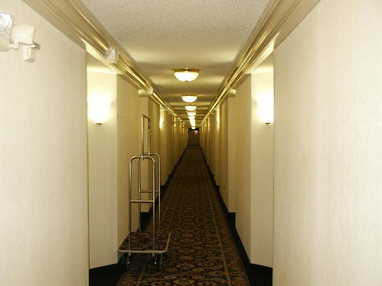 SpringHill Suites Atlanta Kennesaw: Long hallways