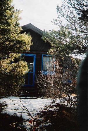 Blue Lake Ranch: The Cabin from the back