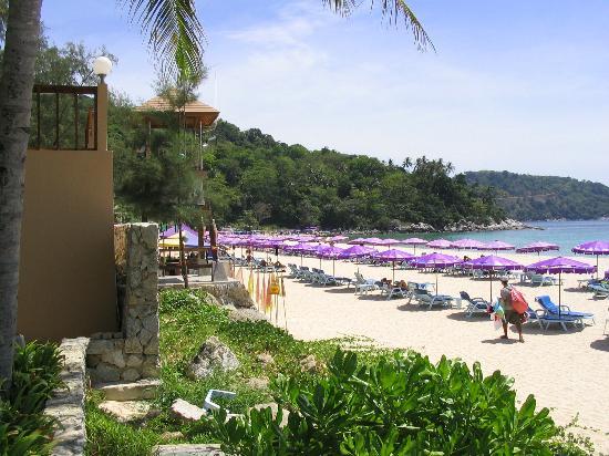 Kata Noi Beach照片