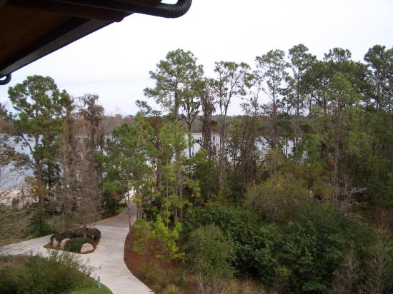 Disney's Wilderness Lodge: Lake view from room