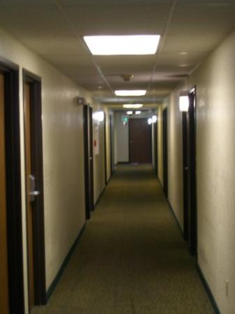 Quality Inn Banning I-10: Filthy hallways