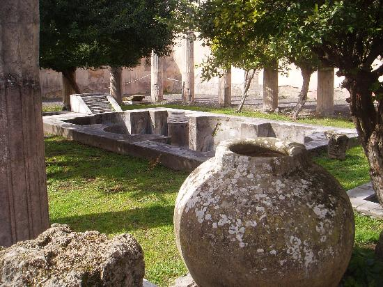 Pompeii, Italy: From a rich man`s garden - his pool area !