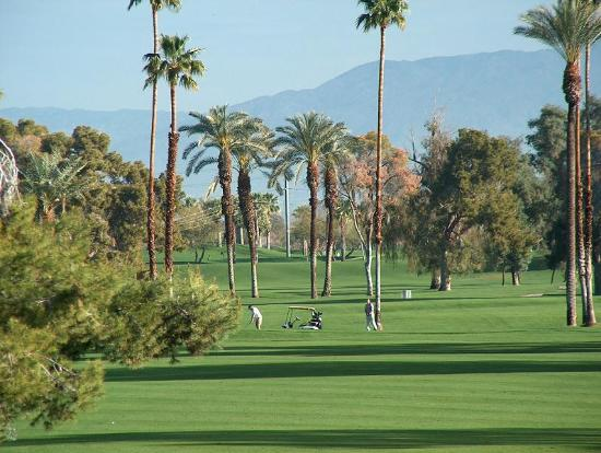 Plaza Resort and Spa: Golf course view from #216