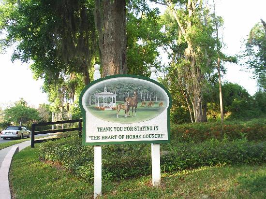 Foto de Hilton Ocala