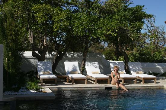 Steenberg Hotel: Your very own private pool