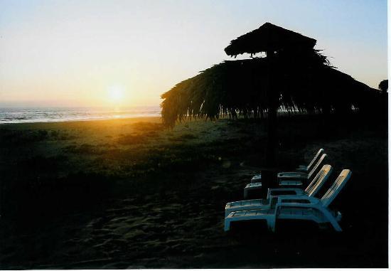 Las Palmas Beachfront Villas: Palapas on the beach