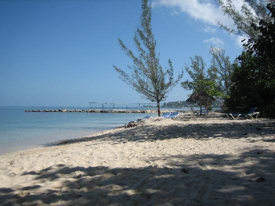 beach montego bay Nude