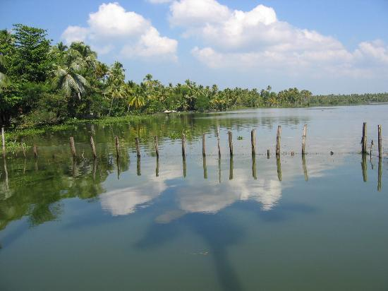 Kayaloram Heritage Lake Resort : view of lake from hotel grounds