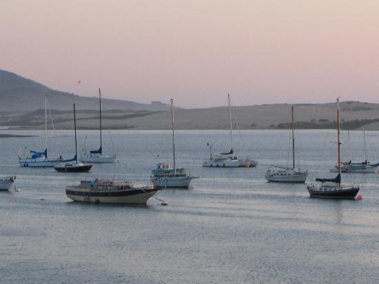 456 Embarcadero Inn & Suites : harbor view