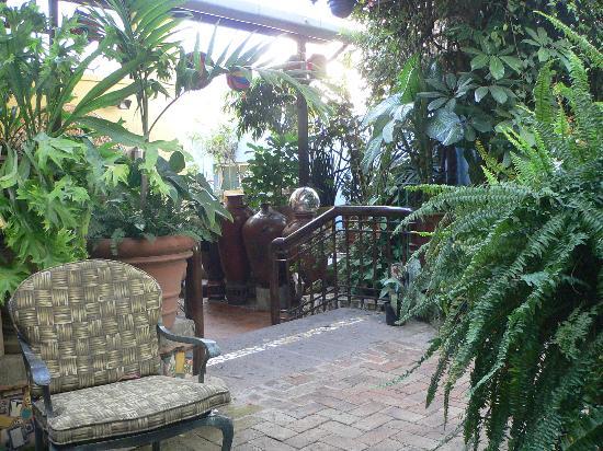 Casa de Las Flores: Eden Before the Fall