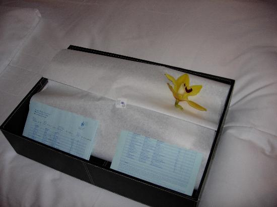 Widder Hotel : Laundry returned with an orchid