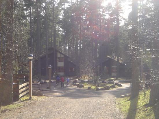 Center Parcs Whinfell Forest: Lodge