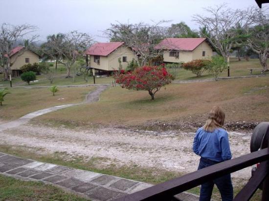 ويندي هيل ريزورت: From our porch, looking across Windy Hill
