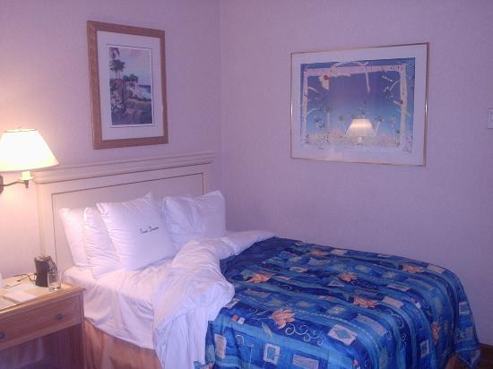 安納海姆-奧蘭治縣希爾頓逸林酒店照片