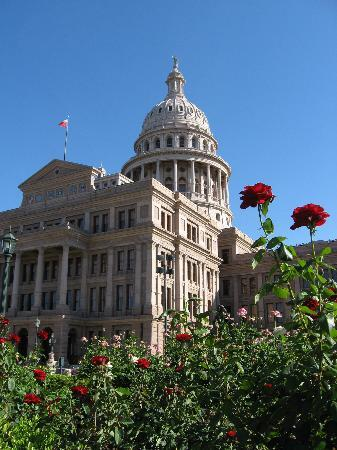 Texas State Capitol: Roses blooming outside