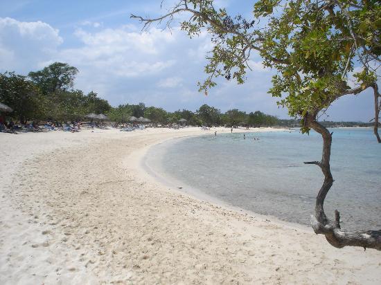 Hotel Playa Pesquero Resort, Suite & Spa: Beach