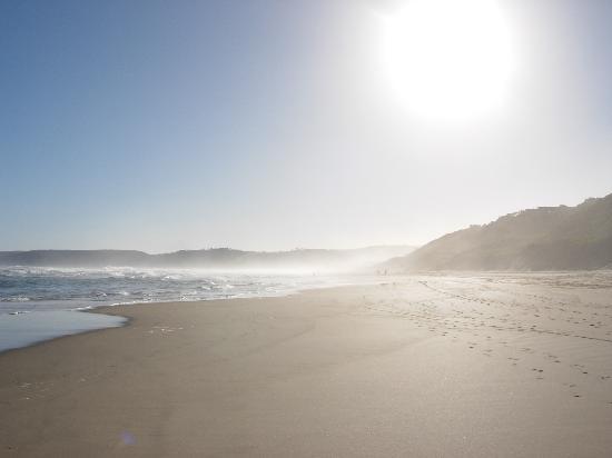 Wilderness Beach Hotel: The beach