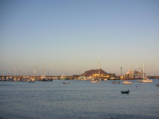 Oasis Royal : Corralejo harbour