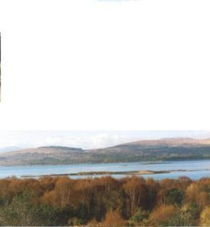 Photo of Island View Kenmare