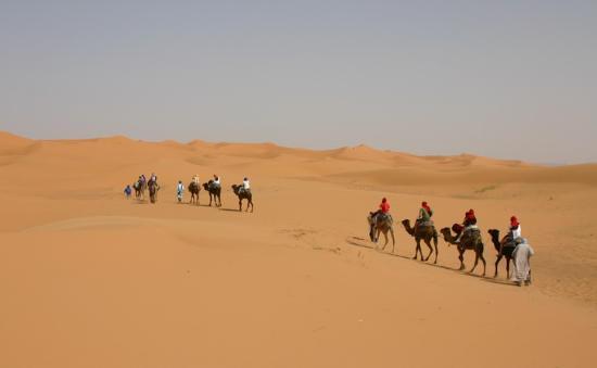 Hotel Kasbah Mohayut: Dunes directly behind Kasbah Mohayut