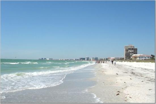 دولفين بيتش ريزورت: The beach view to the North, in front of the hotel.